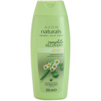 Avon Naturals Herbal Regenerating Shampoo With Chamomile  8.5 oz AVONATW_KSHA10