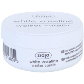 Ziaja Special Care White Vaseline 1 oz