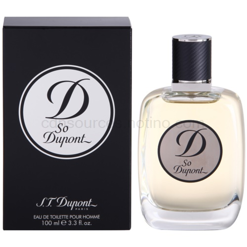 S.T. Dupont So Dupont 100 ml toaletní voda