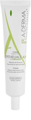 A-Derma Epitheliale produto para tratamento local para pele irritada