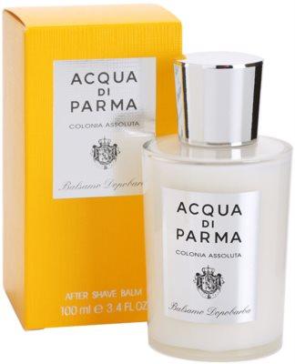 Acqua di Parma Colonia Assoluta After Shave balsam pentru barbati 1