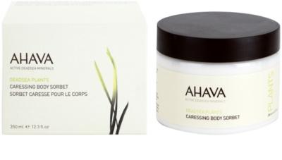 Ahava Dead Sea Plants jemný telový sorbet 1