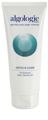 Algologie Detox & Clean hloubkově čisticí gel