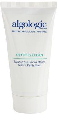 Algologie Detox & Clean máscara de limpeza com algas marinhas