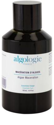 Algologie Algo Essentials koncentrátum tengeri moszattal