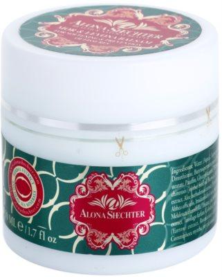 Alona Shechter Professional balsam hranitor