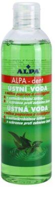 Alpa Dent apa de gura