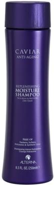 Alterna Caviar Moisture hydratisierendes Shampoo für trockenes Haar