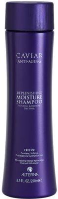 Alterna Caviar Moisture szampon nawilżający do włosów suchych