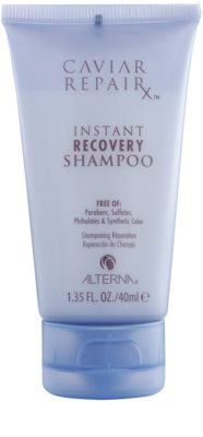 Alterna Caviar Repair coffret I. 4