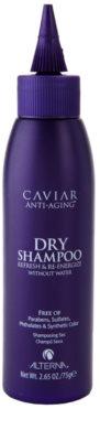 Alterna Caviar Style сух шампоан  за всички видове коса