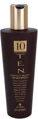 Alterna Ten tápláló sampon a haj regenerálásáért és megerősítéséért szulfátmentes
