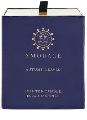Amouage Autumn Leaves ароматизована свічка 3