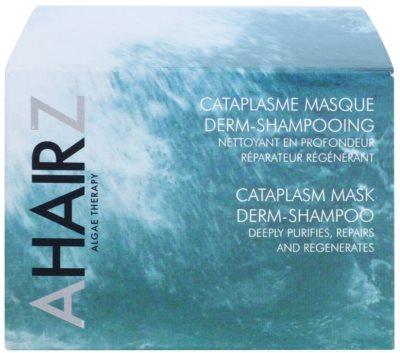 André Zagozda Hair Algae Therapy mascarilla de limpieza y regeneración en forma de champú 3