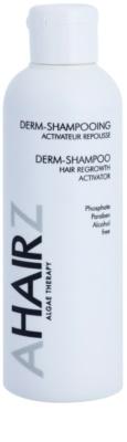 André Zagozda Hair Algae Therapy champô dermatológico para estimulação do crescimento do cabelo