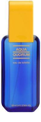 Antonio Puig Aqua Quorum Eau de Toilette pentru barbati 2