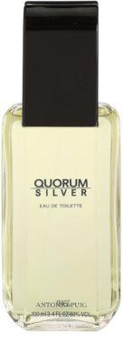Antonio Puig Quorum Silver туалетна вода для чоловіків 2