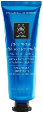 Apivita Express Beauty Sea Lavender máscara facial hidratante e antioxidante