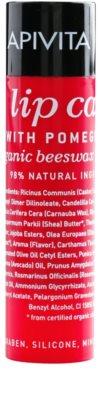 Apivita Lip Care Pomegranate bálsamo nutritivo para lábios