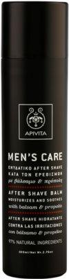 Apivita Men's Care Balsam & Propolis balzam za po britju