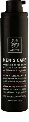 Apivita Men's Care Balsam & Propolis балсам след бръснене 1