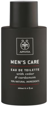 Apivita Men's Care Cedar & Cardamom eau de toilette férfiaknak 2