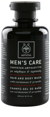 Apivita Men's Care Cardamom & Propolis шампоан и душ гел 2 в 1