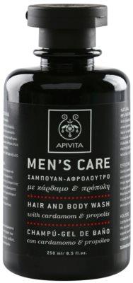 Apivita Men's Care Cardamom & Propolis champú y gel de ducha 2 en 1