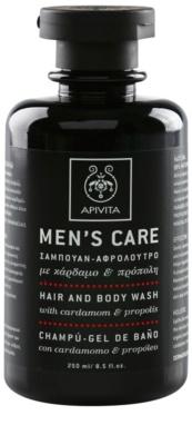 Apivita Men's Care Cardamom & Propolis gel de dus si sampon 2in1