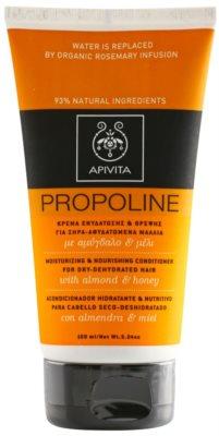 Apivita Propoline Almond & Honey condicionador hidratante e nutritivo para cabelo seco