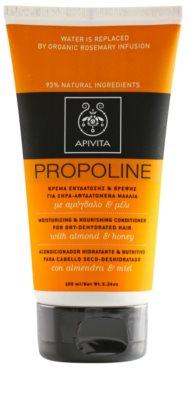 Apivita Propoline Almond & Honey feuchtigkeitsspendender und nährender Conditioner für trockenes Haar