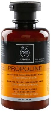 Apivita Propoline Almond & Honey sampon pentru par uscat