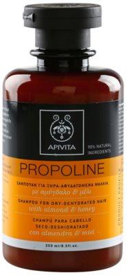 Apivita Propoline Almond & Honey шампоан  за суха коса