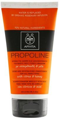 Apivita Propoline Citrus & Honey revitalizacijski balzam za vse tipe las