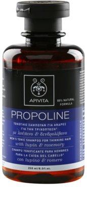 Apivita Propoline Lupin & Rosemary tönendes Shampoo gegen schütteres Haar für Herren