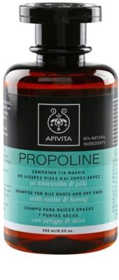 Apivita Propoline Nettle & Honey champô para couro cabeludo oleoso e pontas secas