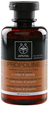 Apivita Propoline Cedar & Propolis champô anticaspa para cabelo oleoso
