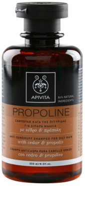 Apivita Propoline Cedar & Propolis Shampoo gegen Schuppen für fettiges Haar
