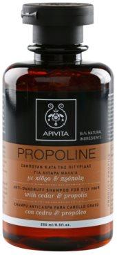 Apivita Propoline Cedar & Propolis шампоан против пърхот за мазна коса
