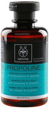 Apivita Propoline Rosemary & Propolis šampon pro mastné vlasy
