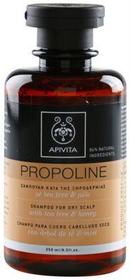 Apivita Propoline Tea Tree & Honey champô para couro cabeludo seco com prurido