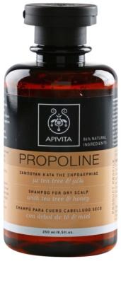 Apivita Propoline Tea Tree & Honey Shampoo für trockene und juckende Kopfhaut