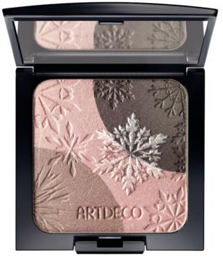 Artdeco Artic Beauty fard de ploape si iluminator 2 in 1