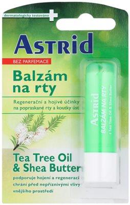 Astrid Lip Care balsam de buze reparator