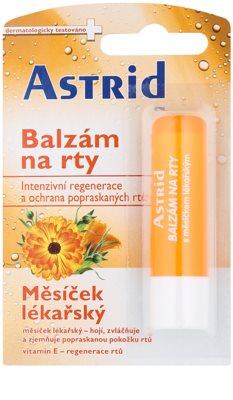 Astrid Lip Care відновлюючий бальзам для губ з нагідками лікарськими