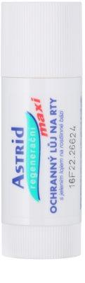 Astrid Lip Care schützendes Lippenbalsam mit regenerierender Wirkung