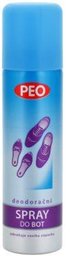 Astrid Peo spray pentru pantofi