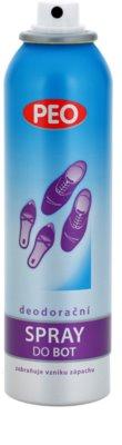 Astrid Peo spray pentru pantofi 1