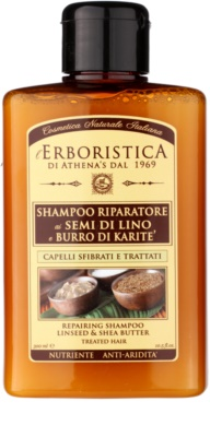 Athena's l'Erboristica champú con aceite de lino para cabello seco y dañado