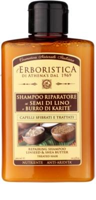 Athena's l'Erboristica Shampoo mit Leinöl für trockenes und beschädigtes Haar